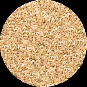 Brown Sona Masoori Rice