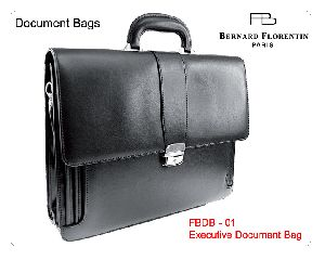 Document Bag