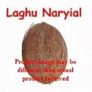 Coconut in Delhi - Manufacturers and Suppliers India