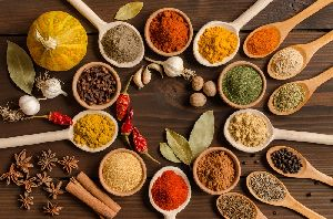 South Indian Spices in West Bengal - Manufacturers and