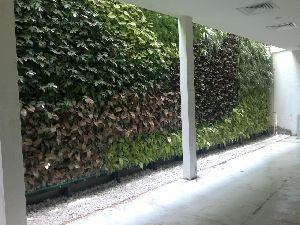 Natural Greenwall Construction Service