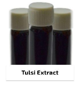 Indian Holy Basil -tulsi Extract