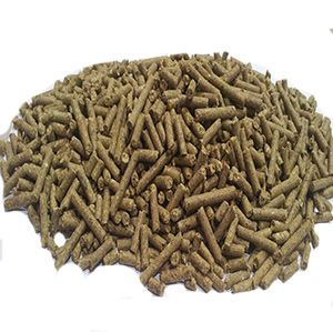 Dairy Special FISH FEED