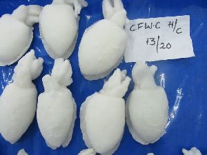 Frozen Cuttle Fish Whole Clean