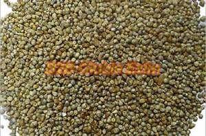 Pearl Millet Grains