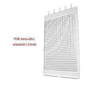 Roller shutter with orientable blinds
