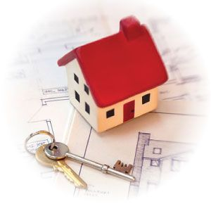 Property Problem Services