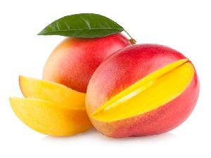 Mango Importers In Kuwait