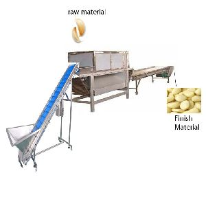 Garlic Peeling Machine Big Production Line