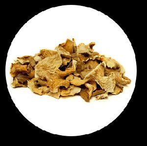 Dehydrated Dry Oyster Mushroom