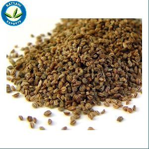 Ayurvedic Medicine Use Top Quality Bulk Celery Seeds