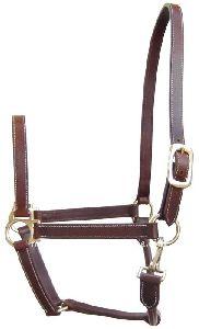 Fancy Leather Horse Halter