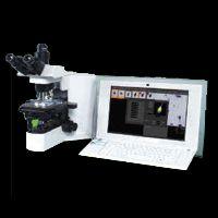 Sperm Analysis Imaging System