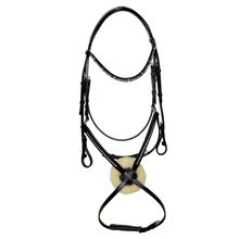 Horse Tack Bridle