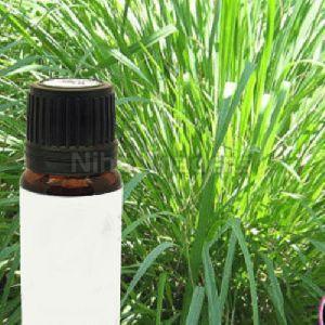 Ayurvedic Ginger Grass Oil