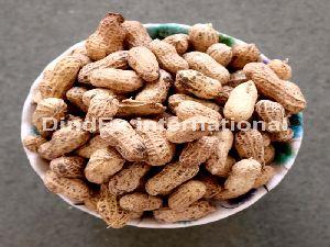 Nutrition Shelled Peanuts