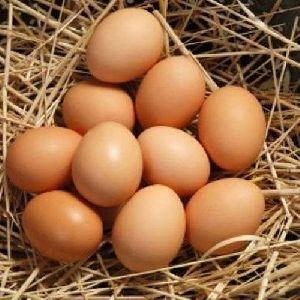 Desi Chicken Eggs