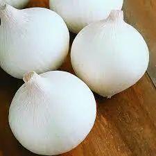 High Grade White Onion