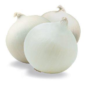Nasik White Onion