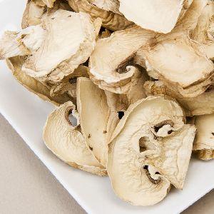 Dried Slice Oyster Mushroom