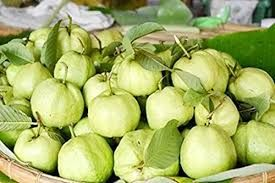 Natural Sweet Guava