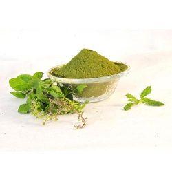 Green Tulsi Powder