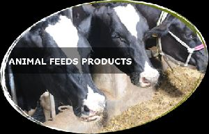 Animal Feeds Products