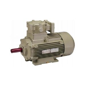 Flame Proof Electric Motor