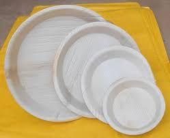 Arecanut Leaf Plates