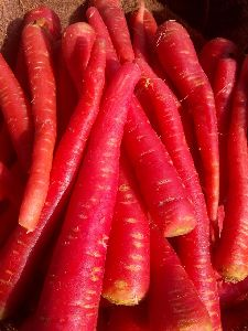 Fresh Red Carrots