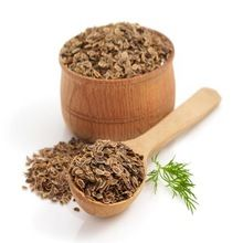 Indian Spices Natural Dill In Best Price