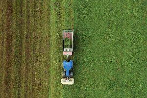 Plantation Ownership