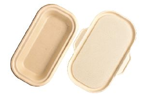 17 Oz Sugarcane Bagasse Food Container