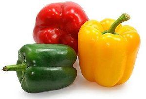 Fresh, Organic & Preserved Vegetables