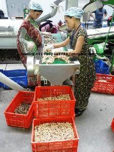 Vietnam Cashew Processing Machinery