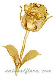 Gold Plated Natural Rose