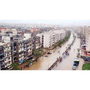 Disaster Management Service