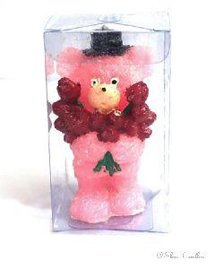 Teddy Bear Coloured