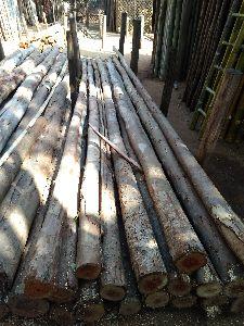 Neelagiri Wooden Poles