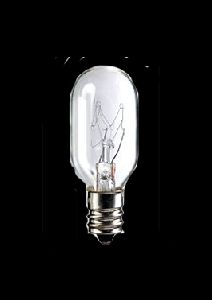 110 Volt Bulb