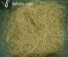 White Coir Fiber