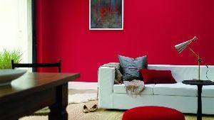 Matte Wall Paint