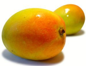 Indian Mango Fruits