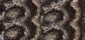 Onyx Natural Stone