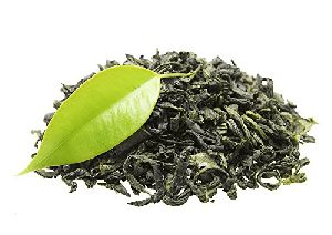 Indian Green Tea