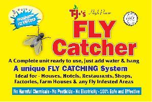Fly Catcher