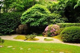 Lawn Pest Control Services