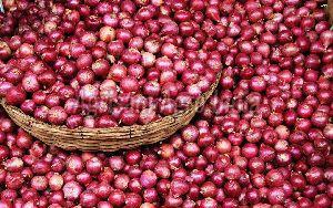 Rose Onion