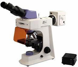 Led Fluorescence Microscope