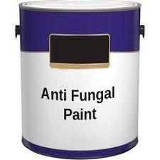 Anti Fungal Coatings